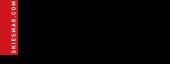 Skies (logo)
